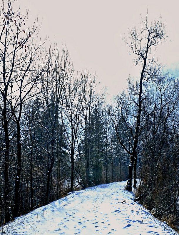 Winterwanderwege - Wandern im idyllischen Ammertal