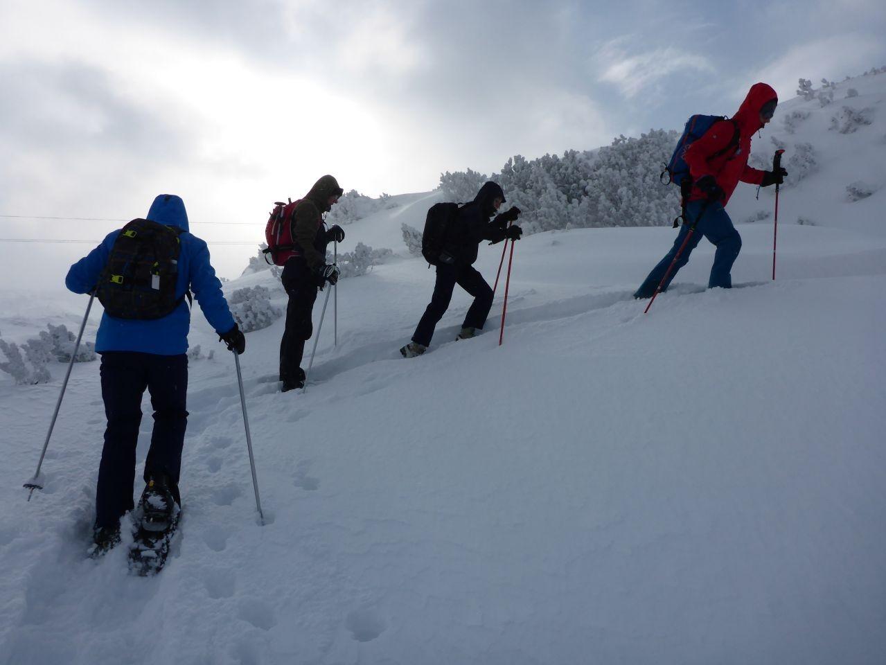Hochalpine Schneeschuhwanderung am Krippenstein